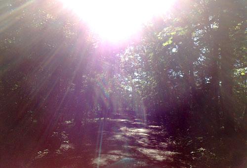 Laufen an Pfingsten 2013 bei strahlendem Sonnenschein