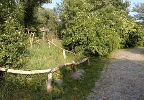 Ansteigender Parkweg im Freizeitpark Marienfelde
