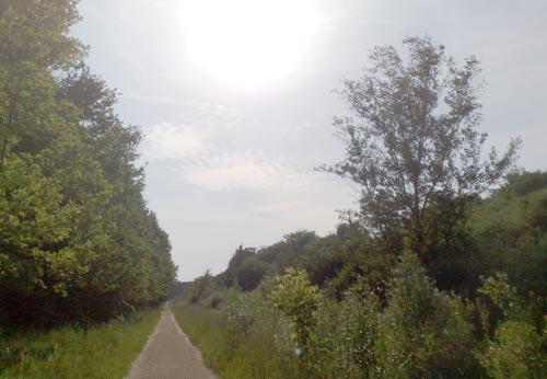 Die Sonne brennt auf den Laufweg