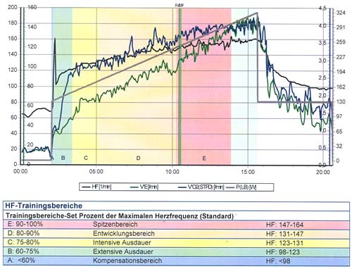 Ergebnisse der Leistungsdiagnostik 2013: Grafik mit HF und VO2