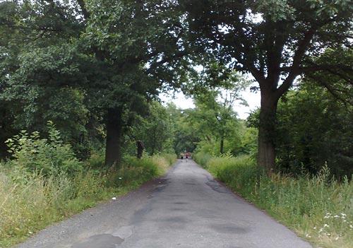 Läufer auf Dorfstraße