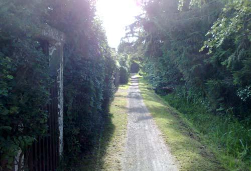 Schmaler Pfad zwischen den Kleingärten