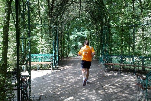 Laufen in Bürgerpark-Idylle