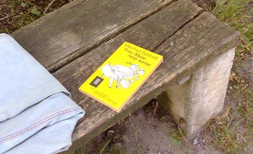 Buch Frau Meier reist weiter auf Parkbank