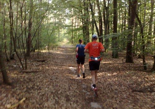 Läufer im Wald zwischen Genshagen und Großbeeren