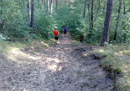 Steil abwärts laufen im Wald