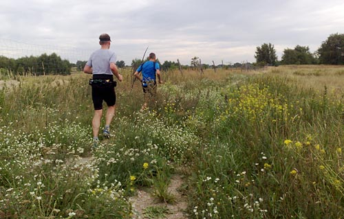 Läufer in der Genshagener Heide