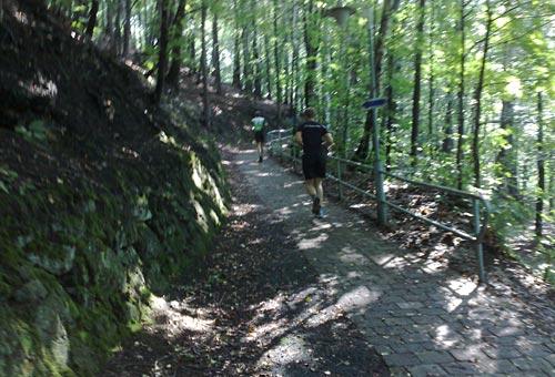 Läufer auf Anstieg beim Nationalpark-Trail 2013