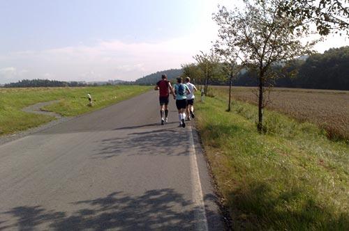 Läuferfeld auf einer Straße kurz hinter Bad Schandau