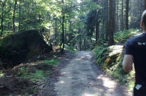Wunderschöne Landschaft beim Trail durch den Nationalpark Sächsische Schweiz
