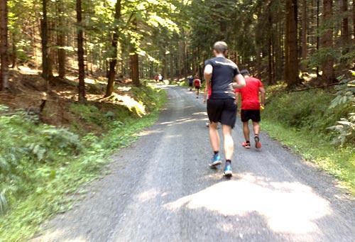 Und wieder eine Steigung beim Nationalpark-Trail