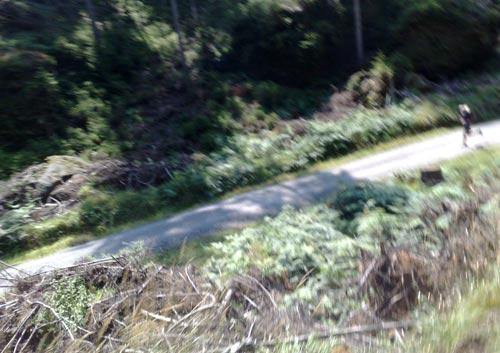 Läufer am Fuß einer Serpentinen-Schleife
