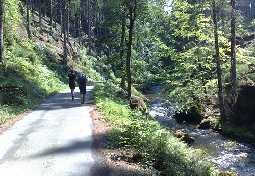 Läufer zwischen hohen Felsen und der Kirnitzsch