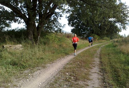Läufer auf dem Weg nach Großbeeren