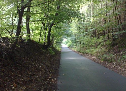 Waldstraße nach Bellin