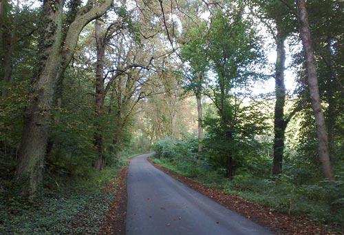 Asphaltweg zurück nach Mühl Rosin