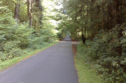 Laufen durch den Wald zwischen Bellin und Kirch Rosin