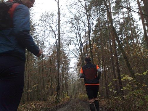 Laufen durch den Wald in der Diedersdorfer Heide