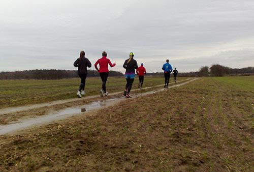 Läuferinnen und Läufer zwischen Feldern