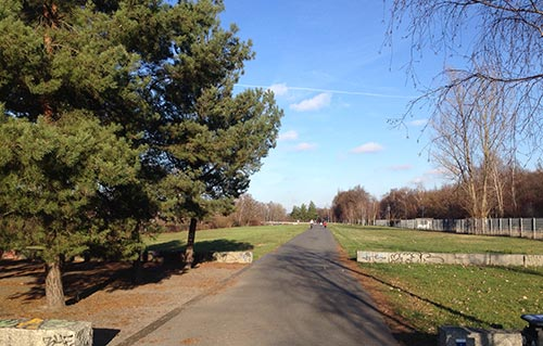Sonniger Wintertag im Hans-Baluschek-Park