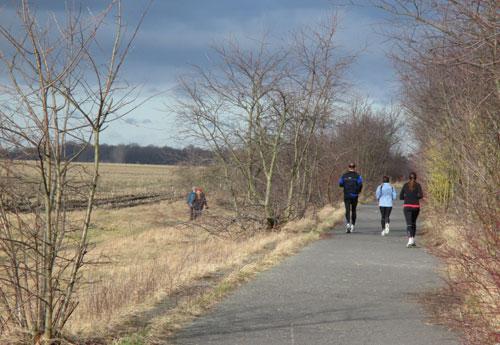 Läuferinnen und Läufer auf dem Berliner Mauerweg
