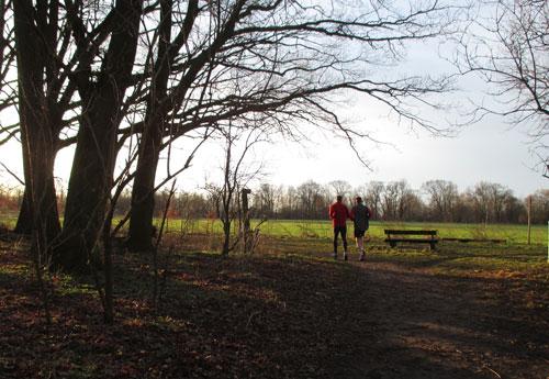 Laufen wie im Frühling – und das Anfang Februar