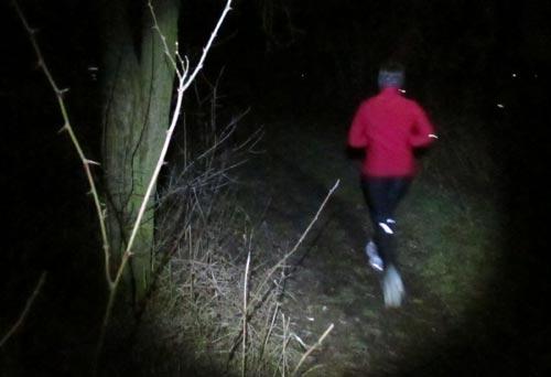 Natur des Freizeitparks im Licht der Läufer-Lampen