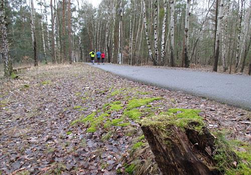 Läufer-Gruppe auf der Runde um den See
