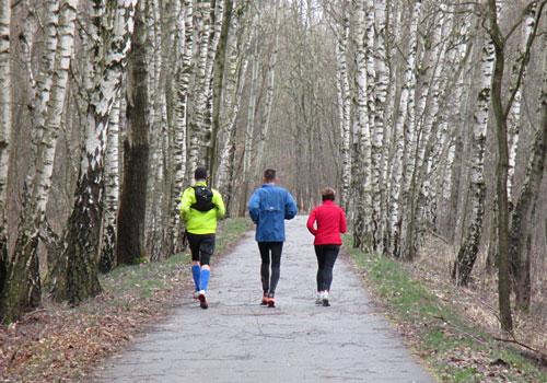 Läufer-Gruppe im Birkenwäldchen