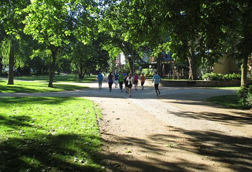 Laufgruppe um Nils Schumann im Park