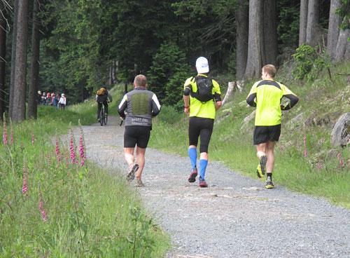 Laufblogger auf dem Weg zum Brocken