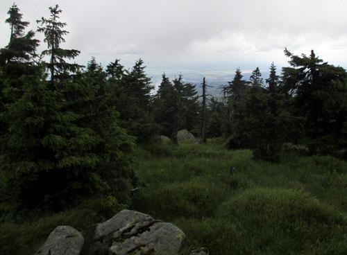 Blick über die Harz-Landschaft