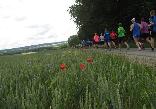 Läufer mit Feldblumen im Vordergrund