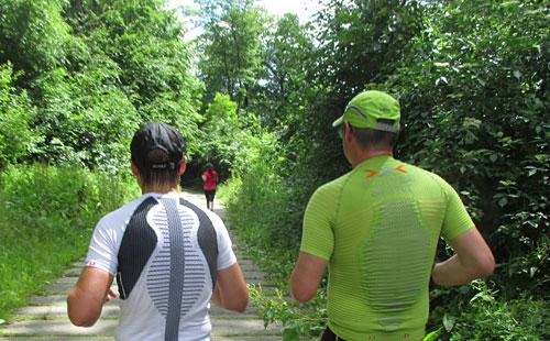 Auf Forstwegen am Tollensesee entlang