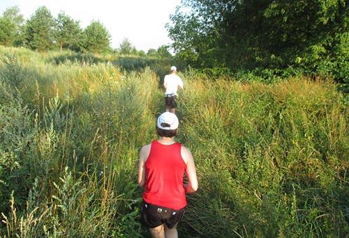 Läufer zwischen hohen Gräsern