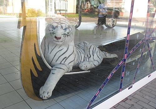 Tiger in einer venezianischen Gondel
