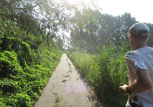Laufweg durch die Sonne