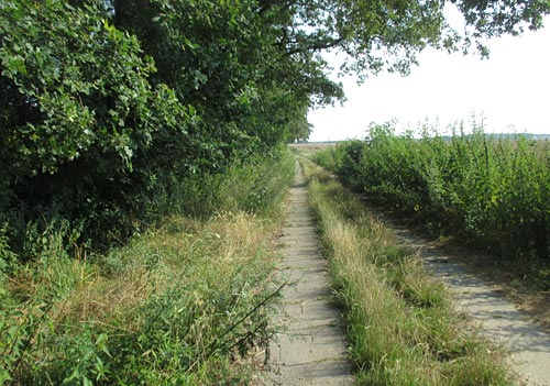Plattenweg Richtung Mahlow