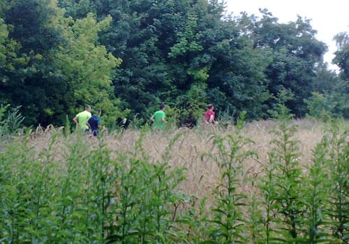 Läufer am Feldrand
