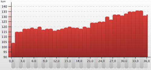 Grafik mit den Herzfrequenzen beim 36-km-Lauf