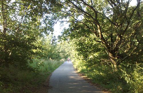 Läufer auf dem Weg nach Ruhlsdorf
