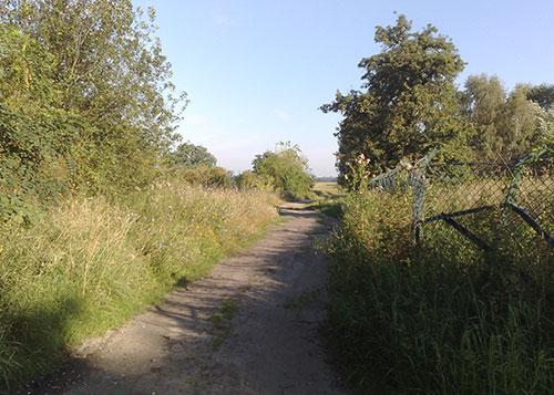 Grüner Weg nach Stahnsdorf