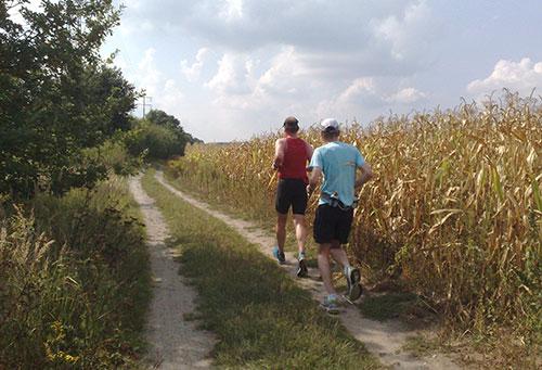Läufer in derHitze neben einem Maisfeld