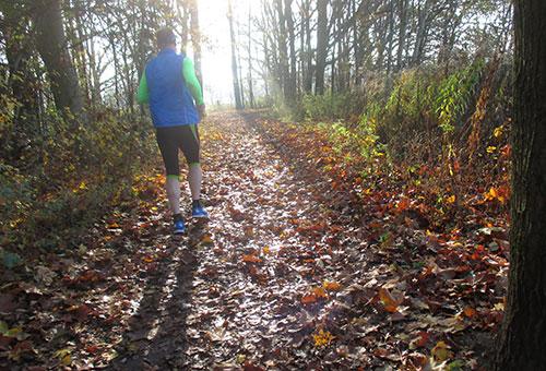 Läufer auf Herbstlaub im Gegenlicht