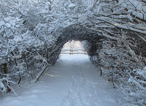 Geheimnisvoller Schneedurchgang