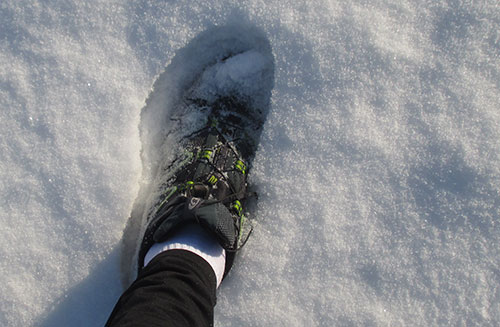 Laufschuh im Schnee