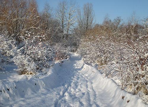 Schmaler Weg durch die Schnee-Landschaft