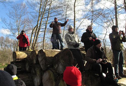 Zuschauer auf Holzstapel