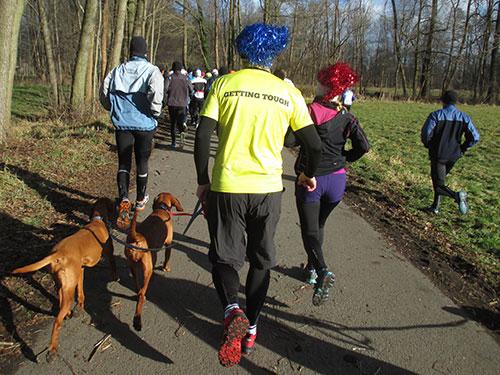 Läufer mit Perücke und Hunden