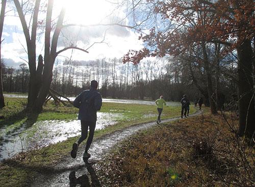 Läufer auf schmalem Weg beim Frostwiesenlauf